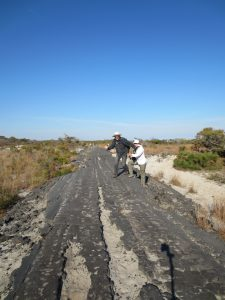 Hitchhiking on the remains of Baltimore Rd on Assateague Island